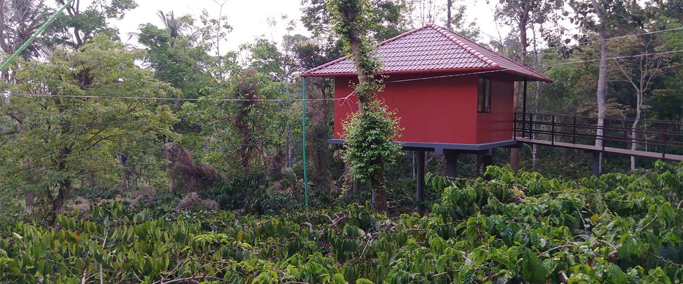 cottage in wayanad
