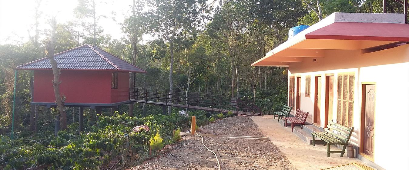 hut in wayanad